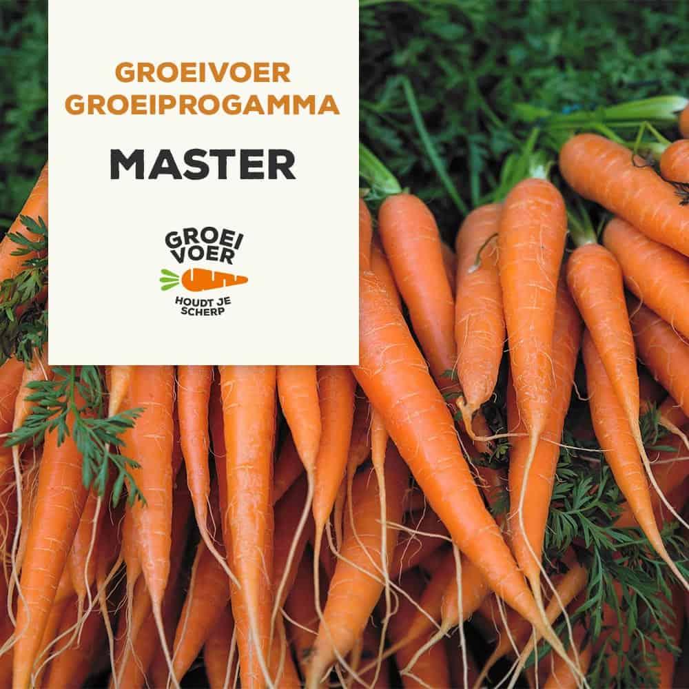 Master Groeiprogramma
